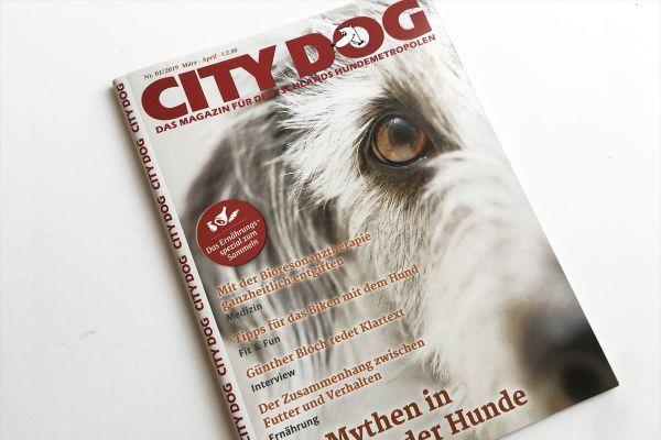 City-Dog-Titel-1-2019